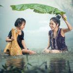 Les 5 Traits Communs Des Familles Solides